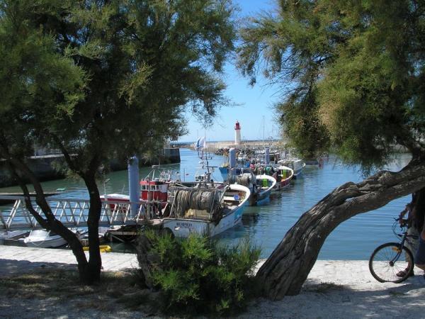 Le port de la Cotiniere