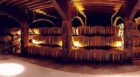 Les chais de Cognac